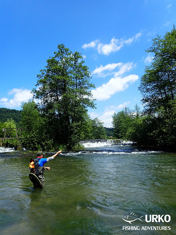 Urko Fishing Adventures Angling Service Fly Fishing Krka River Slovenia