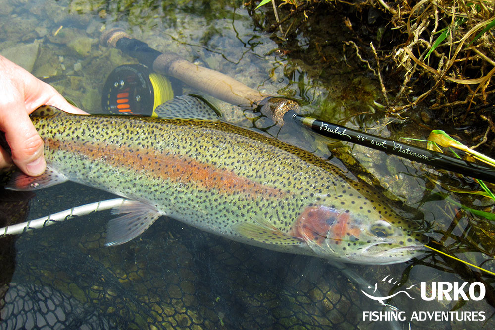 Urko Fishing Adventures Angling Service Fly Fishing Slovenia