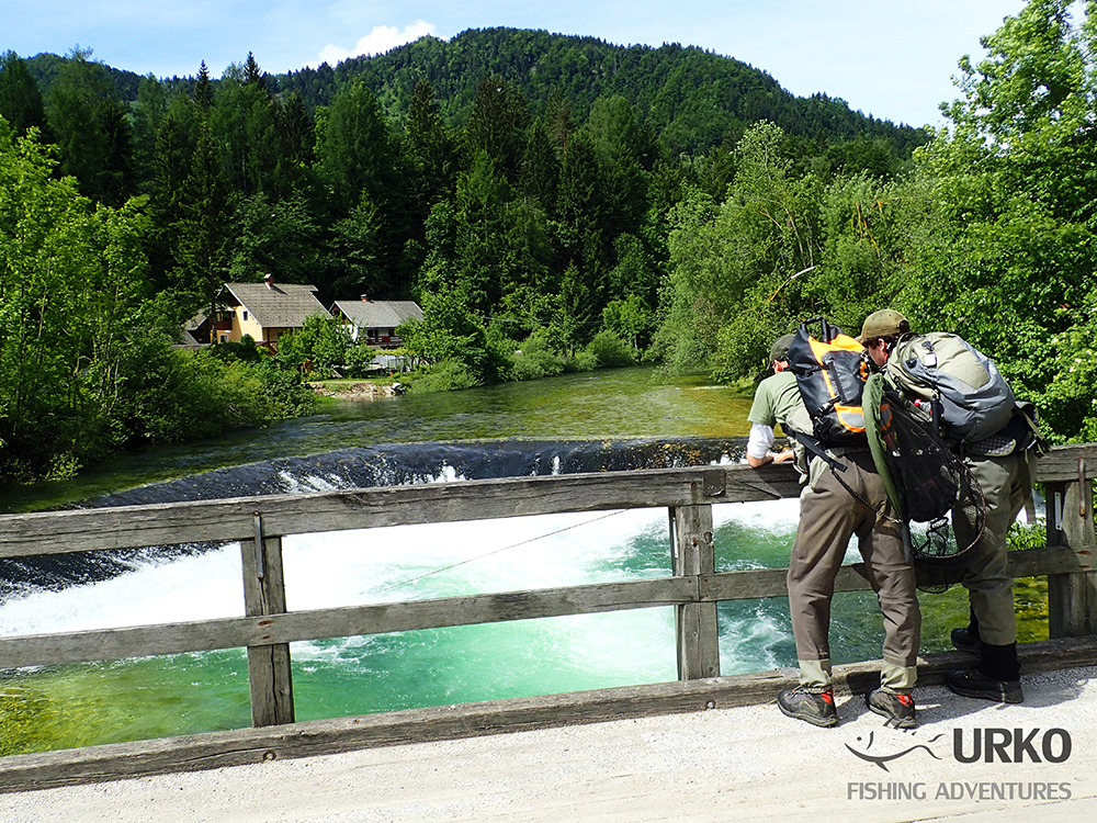 Urko Fishing Adventures Angling Service Fly Fishing Radovna River Slovenia