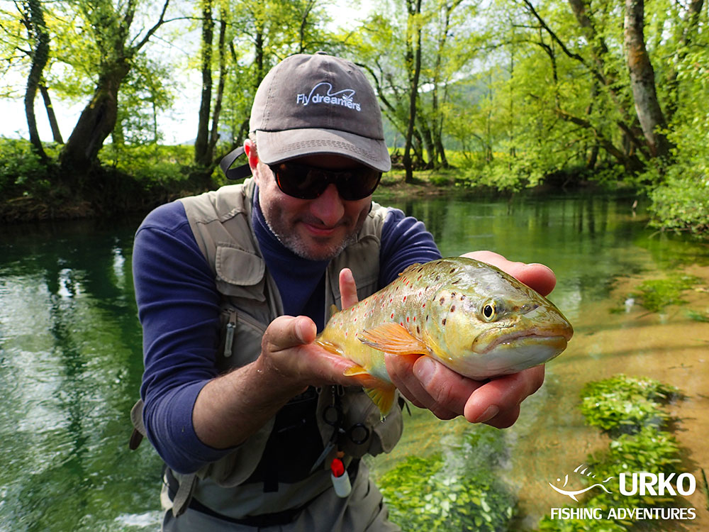 Urko Fishing Adventures Angling Service Fly Fishing Bistra River Brown Trout Slovenia