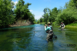 Urko Fishing Adventures FlyFishing Slovenia River Ljubljanica